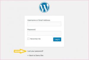 Change WordPress Password Using The Lost Password Link
