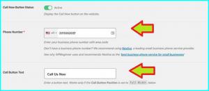 Sticky call button wordpress